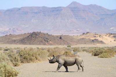 O Namíbii