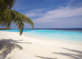 maledivy-hotel-lily-beach-resort-044.jpg