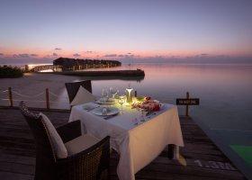 maledivy-hotel-lily-beach-resort-223.jpg