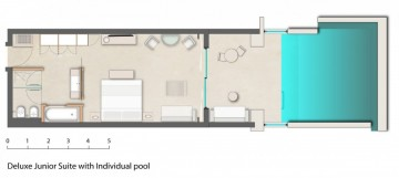 Deluxe Junior Suite with Individual Pool